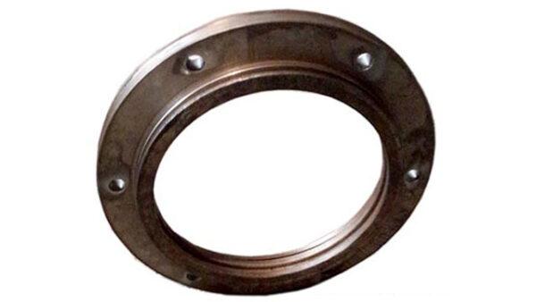 seal-ring